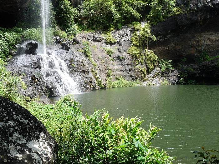 tamarin falls mauritius