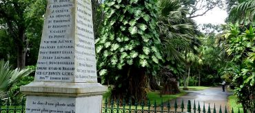 Botanischer GArten Mauritius Pampelmousses