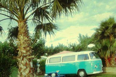 VW Bus Treffen 2014
