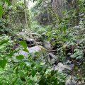 Montseny Wanderrouten