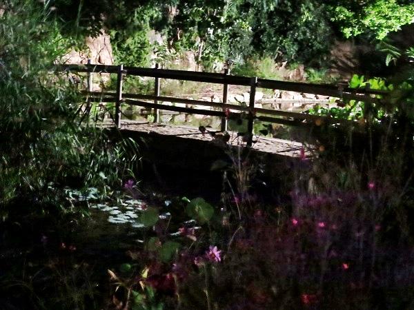 Botanischer Garten bei Nacht Marimurtra