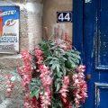 Tür Marais Paris