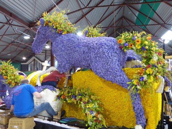 Blumenkorso Holland Pferdekutsche Vorbereitung