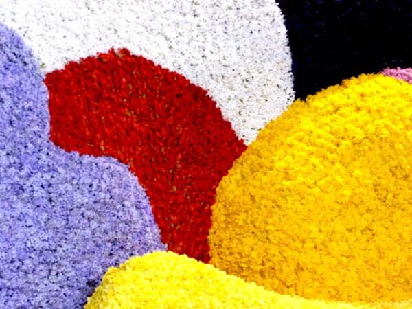bunte blumenwagen beim Blumenkorso Holland Bollenstreek