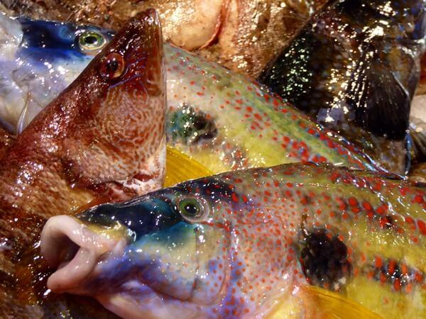 fische fischmarkt