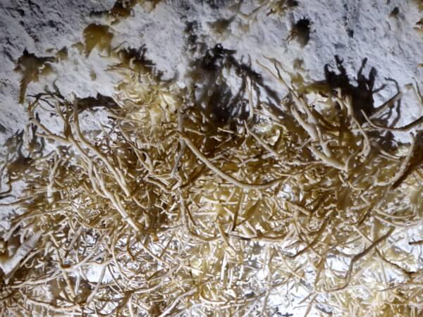 stalaktiten cueva de pozalagua Baskenland