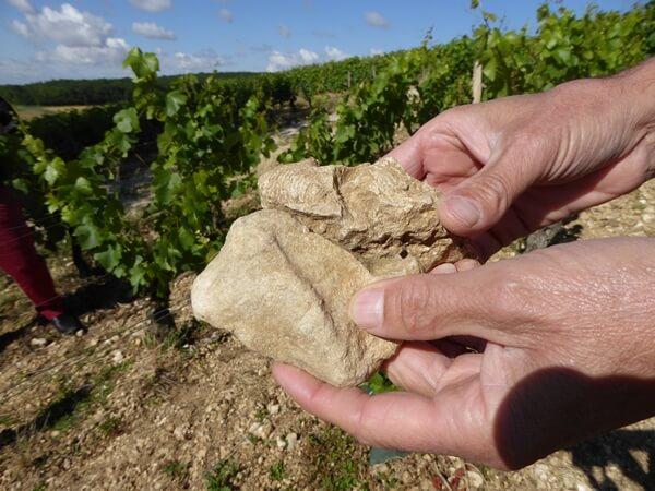 sancerre steine kalksteine