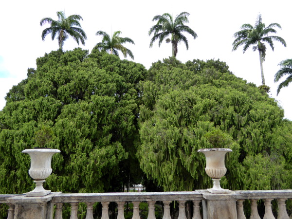 Balkon Museu Imperial Petropolis Dom Pedro