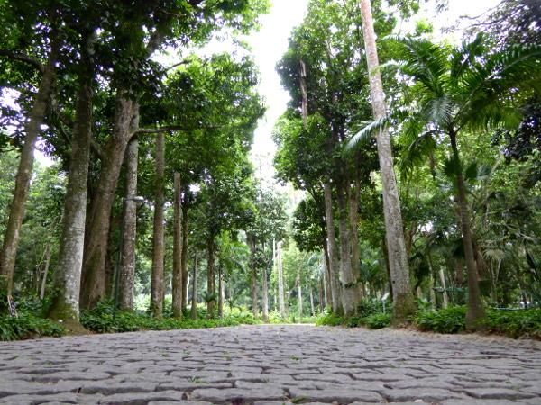 Parque Lage Park in Rio de Janeiro
