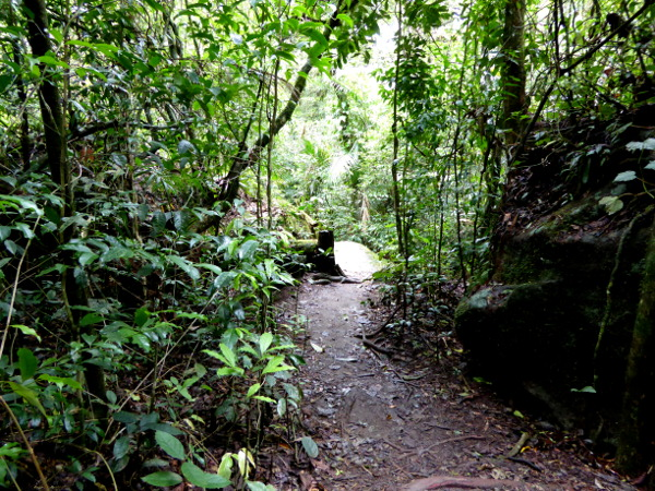 wandern trecking parque serra dos orgaos brasilien