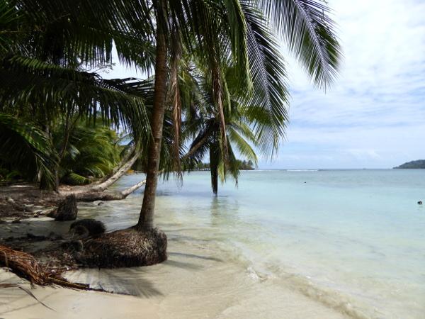Isla Carenero Bocas del Toro