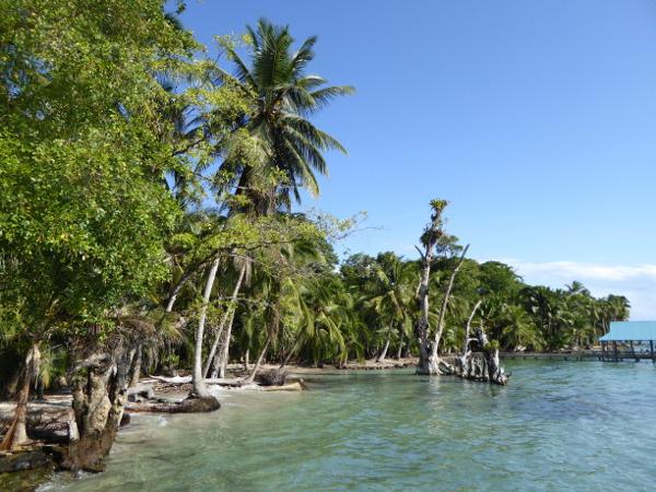 Isla Carenero Bocas fruehstueck ausblick