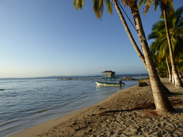 Isla Carenero Bocas strand am buccaneer resort