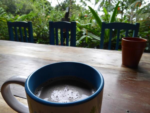 Kakao mit kokosmilch Bastimentos