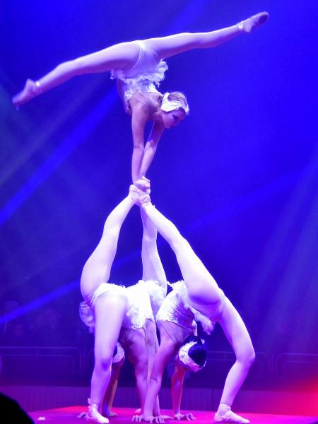 Zirkus Festival Figueres schwanensee
