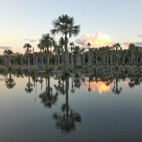 Lagune der Aras Mato Grosso Brasilien
