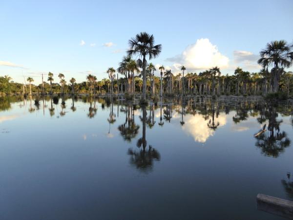 Lagune der Aras Bom Jardim Brasilien Mato Grosso best