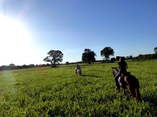 reiten Pantanal Pferde Brasilien