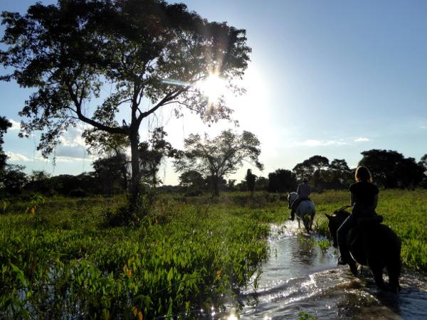 reiten sumpfgebiet pantanal sonnenuntergang