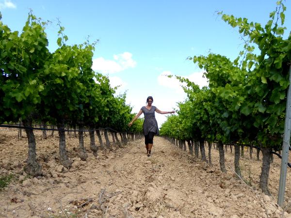 La Placeta Montsant Weine Freibeuter Reisen zwischen den Reben