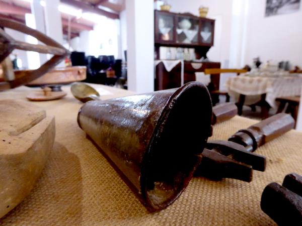 Granja Mas Bes Freibeuter Reisen la Selva Museum