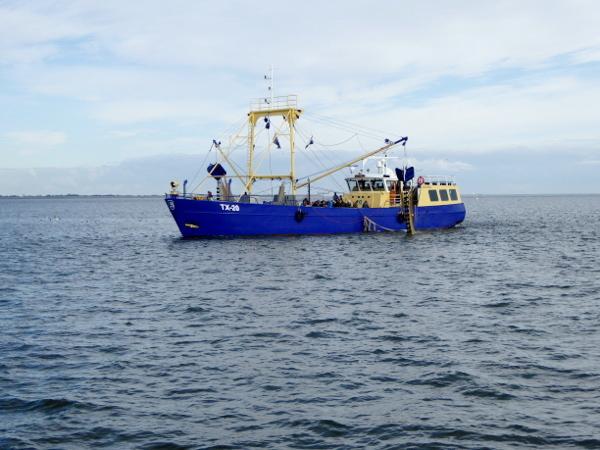 krabbenfischer-auf-see-freibeuter-reisen-texel