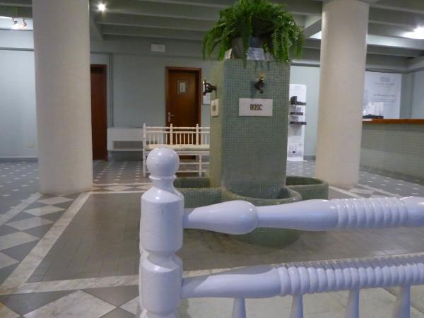 waldbaden badetag in den pyren en. Black Bedroom Furniture Sets. Home Design Ideas