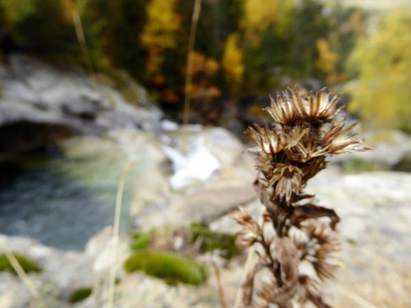 diestel-nationalpark-aigueestortes-freibeuter-reisen