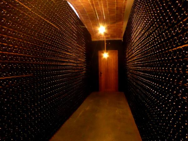 llopart-cava-barcelona-lagerhalle-sekt-freibeuter-reisen