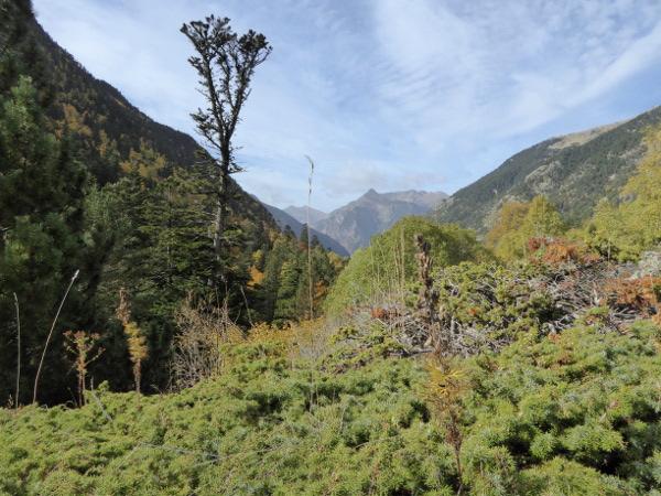 wandern-aussicht-nationalpark-aigueestortes-freibeuter-reisen