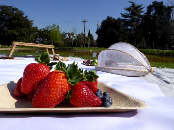 Erdbeeren picknick im Park barcelona freibeuter reisen