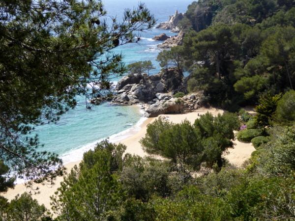 blick von santa cristina ermita auf strand von cala treumal