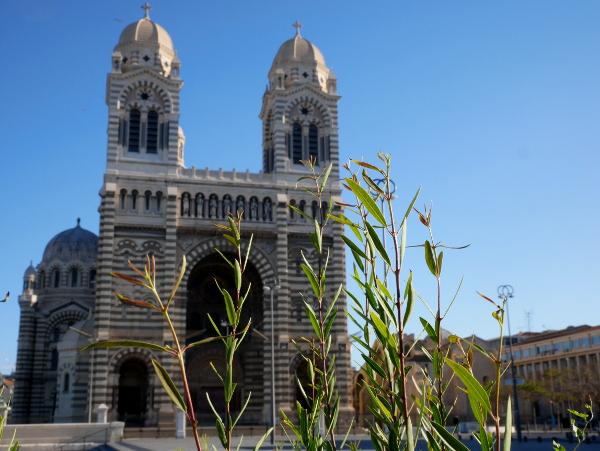 la cathedrale Kathedrale Marseille Freibeuter reisen