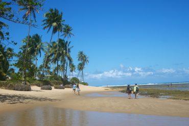 strand in praia do forte