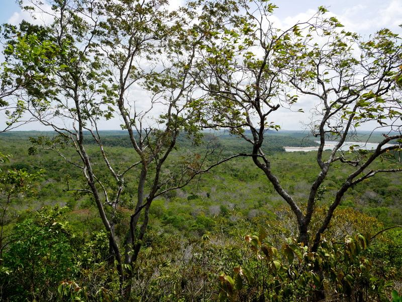 aussicht amazonas rio tapajos morroda pira oca