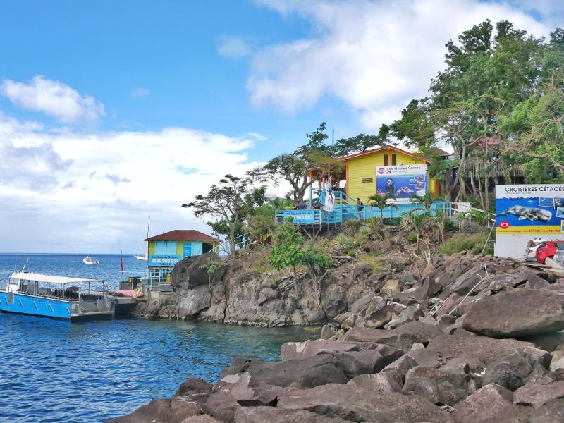 malendure rocher reserve cousteau guadeloup