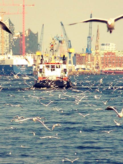 Hamburg und der Hafen 1