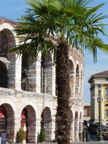 Oper in der Arena, dem Amphitheater in Verona 7