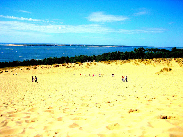 dune de pilat Dune du Pilat arcachon
