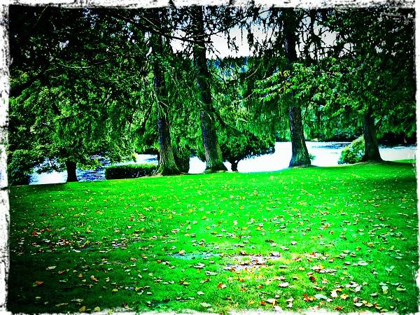 Highlands Dunkeld Kathedrale Garten