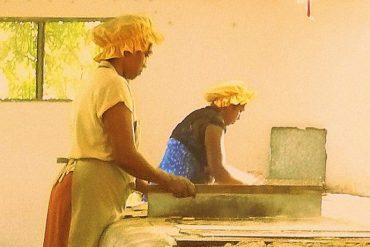 Maniok-Kekse, handgemacht in der Biscuiterie Rault 11