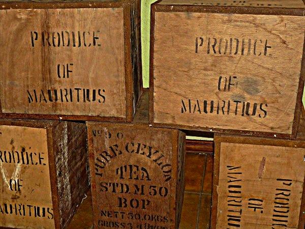 Mauritius Bois Cheri Tee plantage Museum