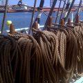 Segelschiffe im Hafen von Barcelona 14