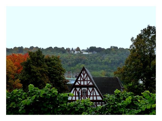 Koblenz Blick auf das Weindorf
