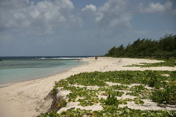 Strand bei Mauritius