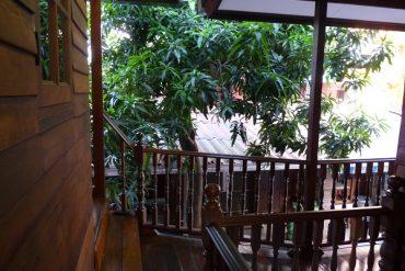 Meine Oase in Bangkok 5