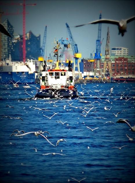 hamburgo puerto barco