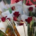 Sant Jordi der Drachentöter 3