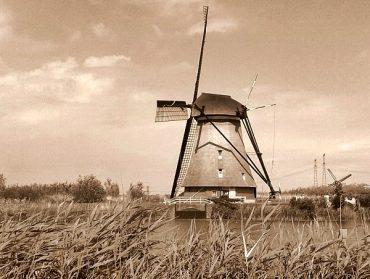 Die Mühlen vom Kinderdijk 12