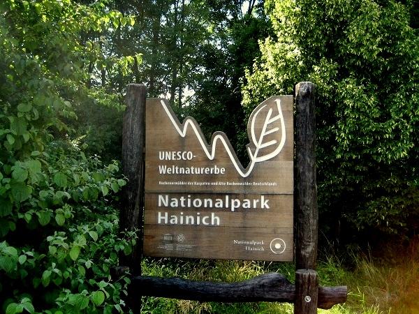 Nationalpark Hainich Welterbe